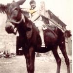 Posando en mula